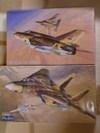 F14amig21