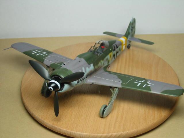 FW190D-9 ⑥