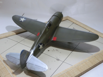 P47dar48-8